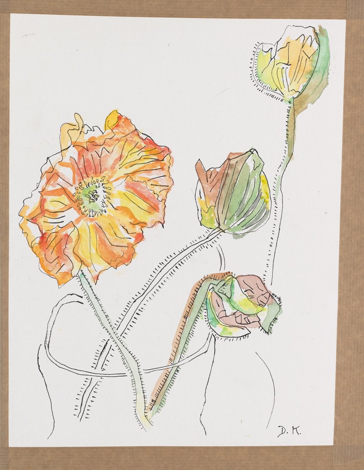 Dessin, encre et aquarelle : Fleurs
