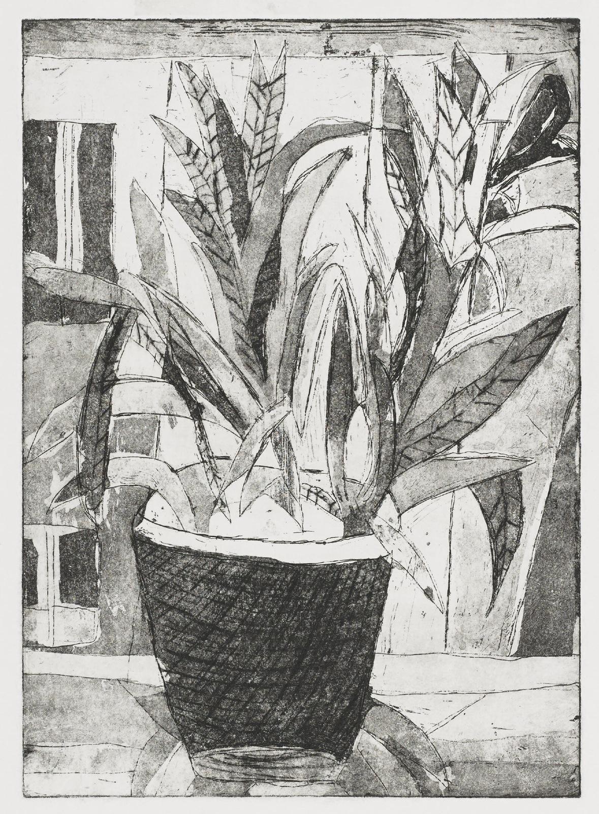 Gravures de David Kennedy - Artiste Peintre Paris : Pot de Fleurs